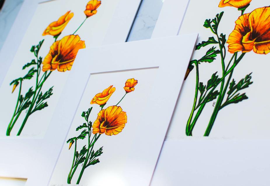 California Poppy Watercolor Print